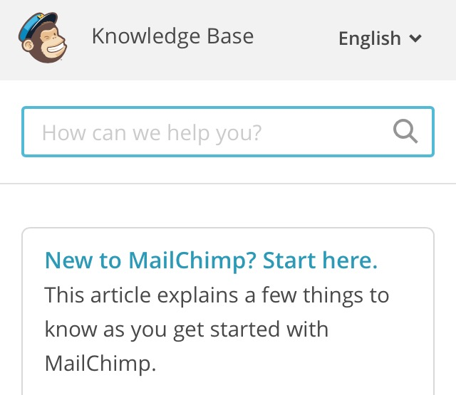 mailchimp support